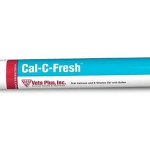 Cal-C-Fresh Gel, 365 gm
