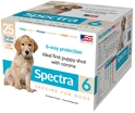 Canine Spectra 6, Box of 25