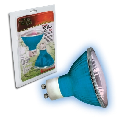 Day Blue Light Halogen Bulb 75W