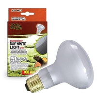 Day White Light Incandescent Spot Bulb 100W