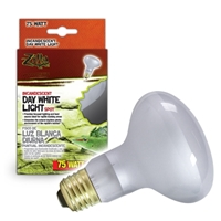 Day White Light Incandescent Spot Bulb 75W