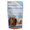 Derma-Strength for Medium & Large Dogs, 120 Bite-Sized Chews : VetDepot.com
