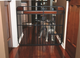 Design Studio Expandable Gate with Door- Large