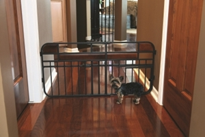 Design Studio Expandable Gate with Door- Mini