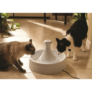 Drinkwell 360 Plastic Fountain