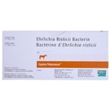 Equine Potomavac 1 ds (1 ml)