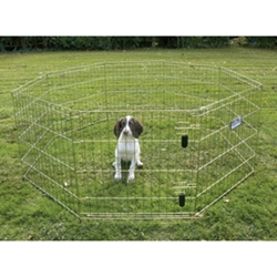 "Exercise Pen Gold-Zinc, 24"" x 30"""