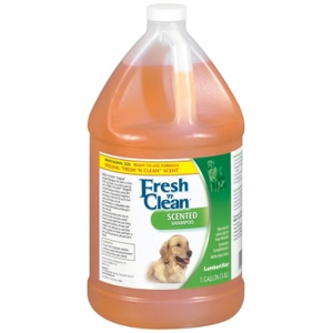 Fresh N' Clean Scented Shampoo, 1 gal