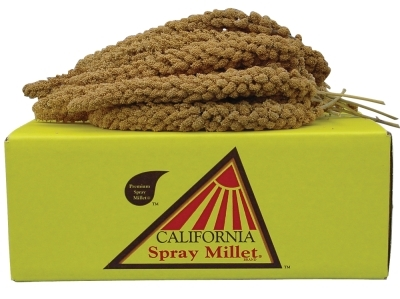 Golden Farms California Golden Spray Millet Birdseed, 5 lbs