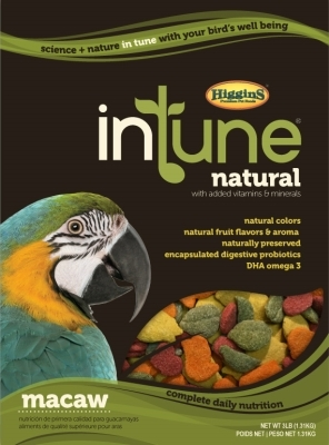 InTune Macaw 18 Lb