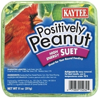 Kaytee Positively Peanut Suet, 11 oz