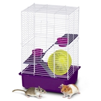 "My First Home for Hamsters 3-Story, 11"" x 13.5"" x 20"" - 4 Pack"