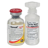 Naxcel Injection, 20 mL : VetDepot.com