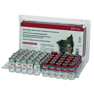 Nobivac Canine 1-DAPPvL2 (5 Way + Lepto) 25 ds Tray