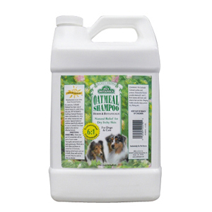 How To Make Natural Oatmeal Shampoo For Dogs