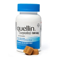 Quellin 100 mg, 180 Soft Chews