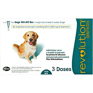 Revolution for Dogs 40-85 lbs, 3 Pack (Teal)