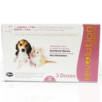 Revolution for Puppies and Kittens under 5 lbs, Pink, 12 Pack