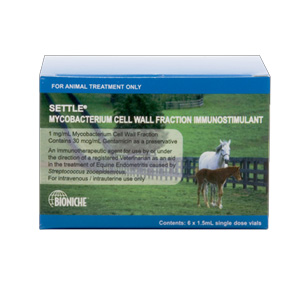 SETTLE Equine box of 6