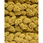 Snack Attack Treats Spray Millet, 25 lb