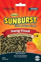 Sunburst Treat Song Food