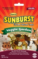 Sunburst Treat Veggie Garden