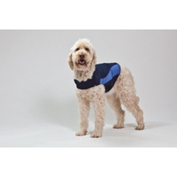 Thundershirt Blue Polo, Extra Extra Large
