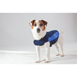 Thundershirt Blue Polo, Large