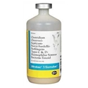 Ultrabac-7/Somubac - 50 ds Vial