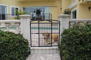 Weather Proof Expandable Gate Extra Tall