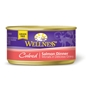 Wellness Cubed Salmon Cat Food, 3 oz - 24 Pack